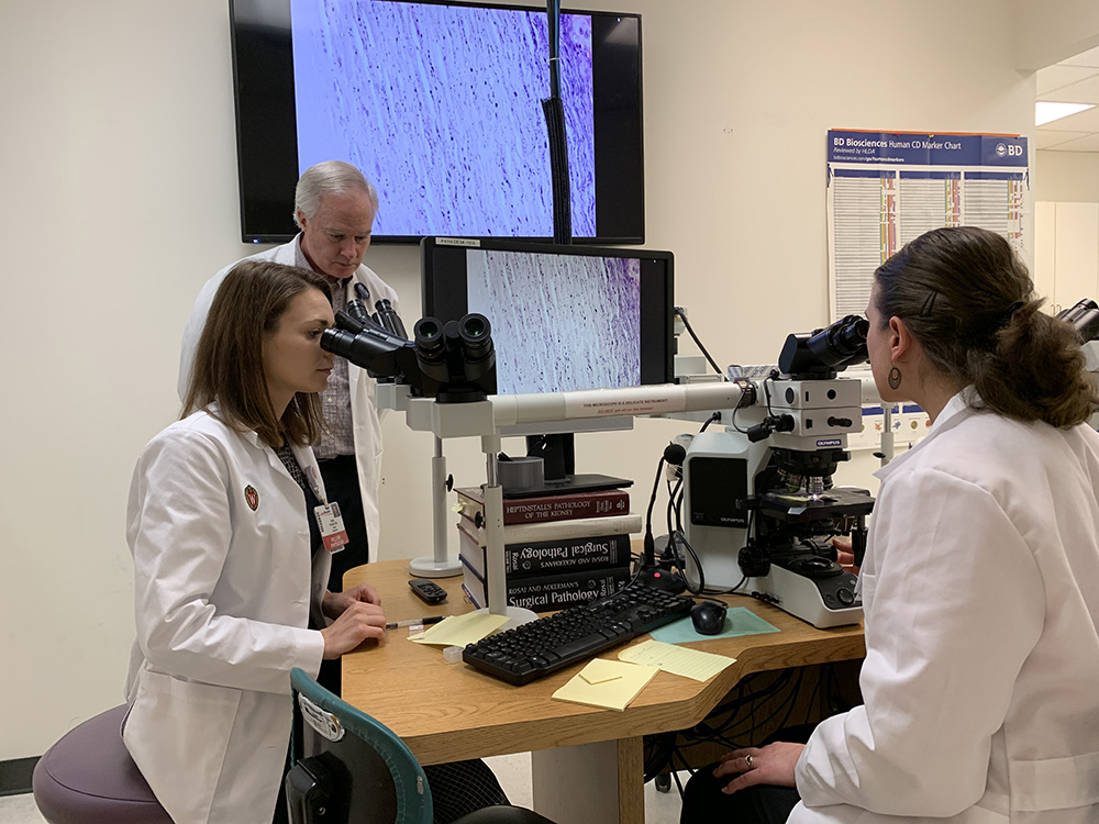 Two fellows use microscopes guided by a professor