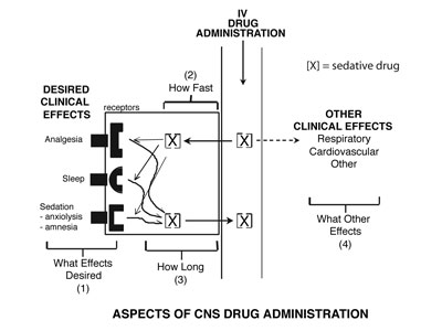 Aspects of CNS Drug Administration figure