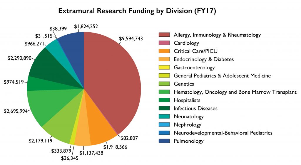 Extramural Research Funding by Division 2017