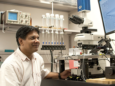 Dr. Pattnaik's lab is investigating novel therapeutic approaches for Leber Congenital Amaurosis, an inherited disease that causes blindness at birth